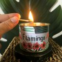 bougie parfumée flamingo à la cire de soja par Maona
